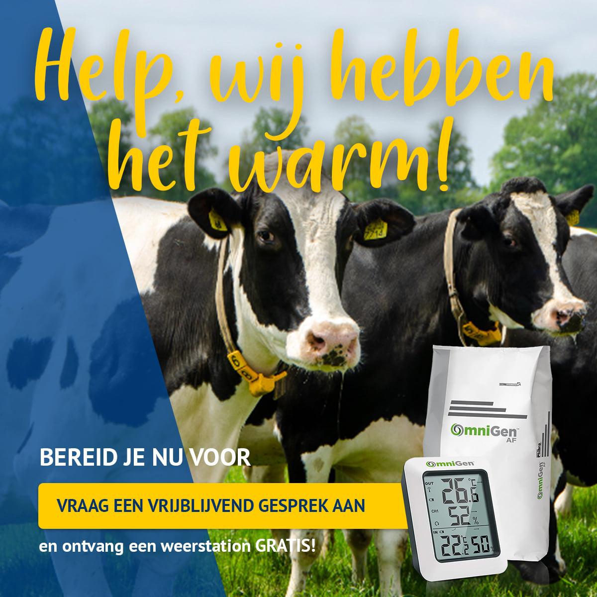 Webinar Donderdag 17 juni 'Voorkom hitte(stress) en wordt hitte de baas!